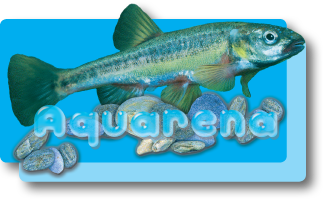 ErlebnisBiotop 'Aquarena'
